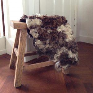 viltvacht-bontschaap
